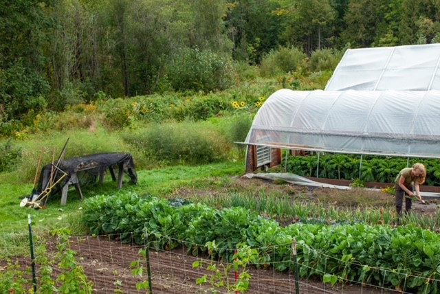 ADK Food System Network